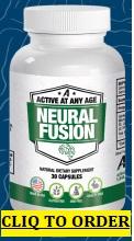 Neural Fusion